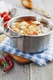 Sopa de la col con la carne Fotografía de archivo