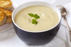 Sopa de la coliflor y de patata Foto de archivo