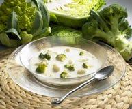 Sopa de la coliflor y del bróculi Imágenes de archivo libres de regalías