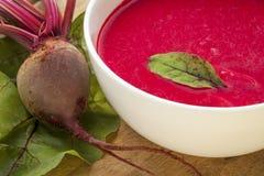 Sopa de la crema de la remolacha roja Fotos de archivo libres de regalías