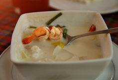 Sopa de la leche de coco con el camarón Fotografía de archivo