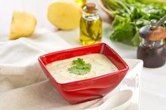 Sopa de la patata y de los salmones Imágenes de archivo libres de regalías