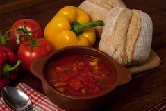 Sopa de la pimienta Fotos de archivo libres de regalías