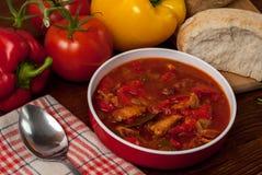 Sopa de la pimienta Fotos de archivo