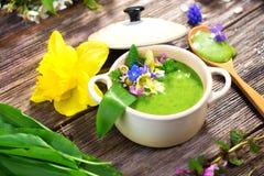 Sopa de la primavera Fotografía de archivo