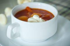 Sopa de la remolacha Imagen de archivo