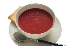 Sopa de la remolocha Foto de archivo