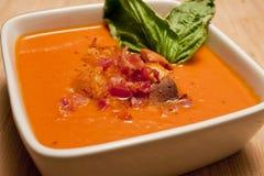 Sopa de la zanahoria del tomate Imagen de archivo libre de regalías