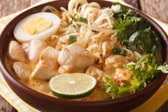 Sopa de Laksa com galinha, ovo, macarronetes de arroz, broto de soja e núcleo Fotografia de Stock Royalty Free
