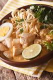 Sopa de Laksa com galinha, ovo, macarronetes de arroz, broto de soja e núcleo Foto de Stock Royalty Free
