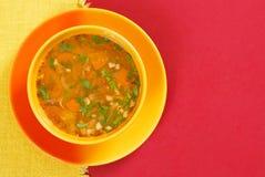 Sopa de las verduras frescas imagen de archivo