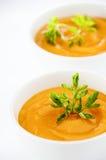 Sopa de las zanahorias Imágenes de archivo libres de regalías