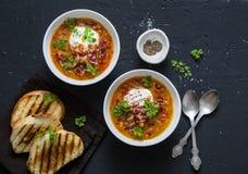 Sopa de lenteja ahumada de la paprika en la cacerola con los bocadillos asados a la parrilla y el tocino curruscante en un fondo  foto de archivo libre de regalías