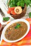 Sopa de lentilha Foto de Stock Royalty Free