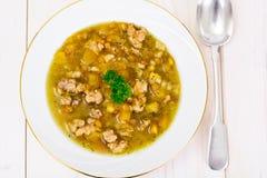 Sopa de lentilha com carne triturada, raiz de aipo, abóbora, cebola Imagens de Stock Royalty Free