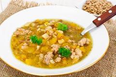 Sopa de lentilha com carne triturada, raiz de aipo, abóbora, cebola Imagem de Stock