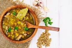 Sopa de lentilha com carne triturada, raiz de aipo, abóbora, cebola Fotos de Stock Royalty Free