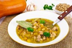 Sopa de lentilha com carne triturada, raiz de aipo, abóbora, cebola Foto de Stock Royalty Free