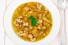Sopa de lentilha com carne triturada, raiz de aipo, abóbora, cebola Fotografia de Stock