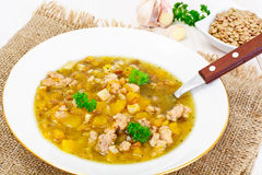 Sopa de lentilha com carne triturada, raiz de aipo, abóbora, cebola Foto de Stock