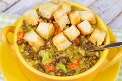 Sopa de lentilha com pão torrado Fotografia de Stock Royalty Free