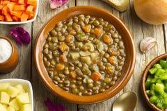 Sopa de lentilha vegetal fotos de stock royalty free