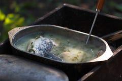 Sopa de los pescados Imagen de archivo libre de regalías