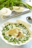 Sopa de los pescados con verdes y huevos Imágenes de archivo libres de regalías