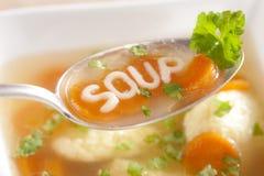 Sopa de macarronete com bolinhos de massa Imagens de Stock Royalty Free