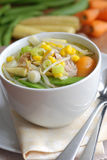 Sopa de macarronete da galinha Fotos de Stock Royalty Free