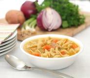 Sopa de macarronete da galinha Imagem de Stock