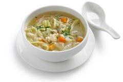 Sopa de macarronete da galinha, frio e sopa da luta da gripe foto de stock royalty free