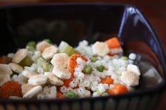 Sopa de macarronete vegetal fotos de stock
