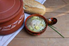 Sopa de macarronetes rústica com galinha e batatas Fotos de Stock