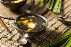 Sopa de Miso caseiro quente fotos de stock royalty free