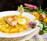Sopa de patatas del pollo Foto de archivo
