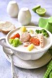 Sopa de peixe de peixes com vegetais Imagem de Stock Royalty Free