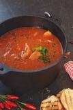 Sopa de peixe de peixes no potenciômetro do ferro fundido, fim acima Imagem de Stock