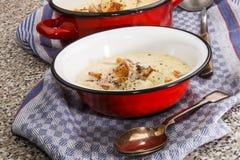 Sopa de peixe de peixes irlandesa com milho de pimenta esmagado Fotografia de Stock