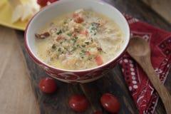 Sopa de pescado de la coliflor Fotografía de archivo libre de regalías