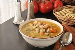 Sopa de pollo con arroz salvaje Imágenes de archivo libres de regalías