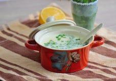 Sopa de pollo cremosa Fotografía de archivo libre de regalías