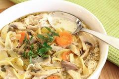 Sopa de pollo hecha en casa Fotografía de archivo