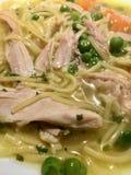 Sopa de pollo hecha en casa con los tallarines y las verduras - detalle/primer fotografía de archivo