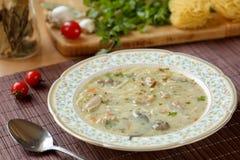 Sopa de pollo hecha en casa deliciosa con enlace búlgaro tradicional, los tallarines, el perejil, la hoja de laurel y las zanahor foto de archivo