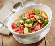 Sopa de pollo picante recientemente cocinada Imágenes de archivo libres de regalías