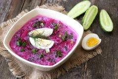 Sopa de remolachas fría Imagen de archivo libre de regalías