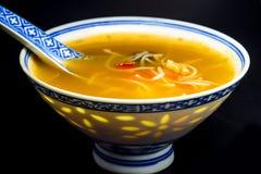Sopa de tallarines asiática Imagen de archivo libre de regalías