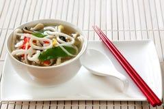 Sopa de tallarines de Udon Foto de archivo libre de regalías