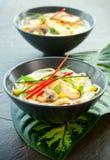 Sopa de tallarines del pollo Imagen de archivo libre de regalías